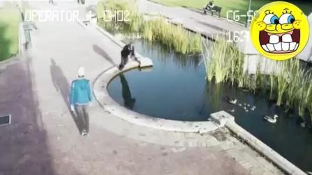 本以为是走路时低头玩手机出糗的视频, 看完沉默了!