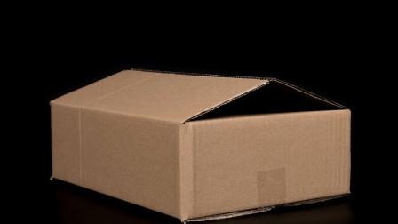 快递盒子不要丢掉了, 生活达人教你废物利用, 值得收藏!