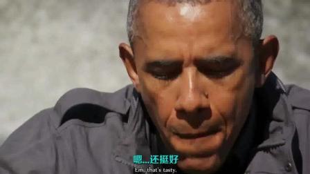 【越野千里】贝爷下厨给奥巴马做三文鱼大餐 从动物嘴里抢吃的