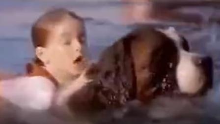 狗狗英勇落水就萝莉 我也好想养一只