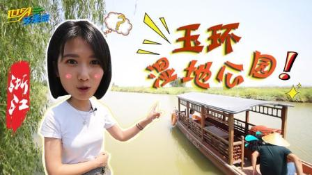 踏青节去哪玩? 万鸟迁飞的终点站, 浙江玉环湿地