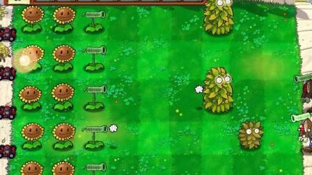 大海解说 植物大战僵尸食物版 小游戏植物僵尸 第1期