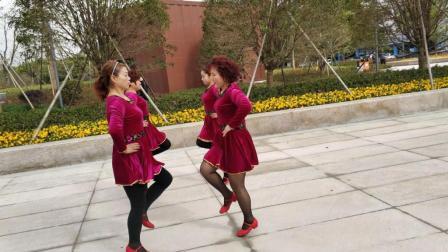 最新dj广场舞双人对跳视频