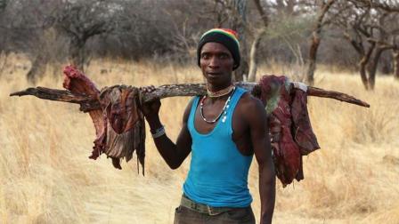 非洲最原始的部落! 我打猎一个小时就能吃饱, 为啥还要种半年地!