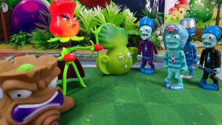拆植物大战僵尸3解锁新款植物玫瑰花射手拳击白菜, 菜问玩具开箱