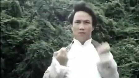 霍元甲的打斗拳拳到肉, 陈真再现中华武术之魂