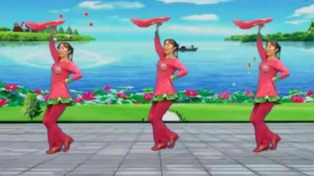 广场舞《大辫子》音乐好听哒 舞姿棒棒哒