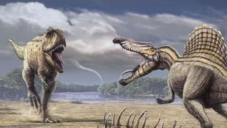 两只体形巨大的鲨齿龙, 为争夺地盘展开殊死争斗