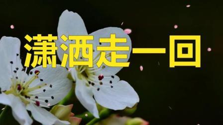 叶倩文一曲《潇洒走一回》怀旧经典, 百听不厌, 分享给朋友!
