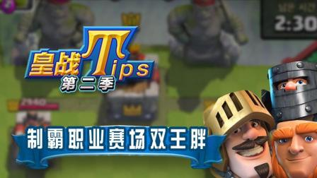 【皇室TIPSII】第14期 职业赛场双王胖