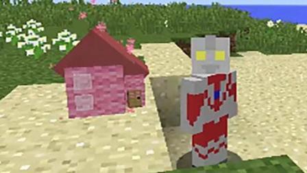 魔哒我的世界 粉色迷你小屋村民与他们的神奇道具
