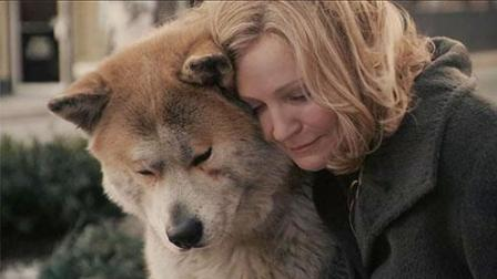 催泪解读忠犬八公, 另类温情看哭众人