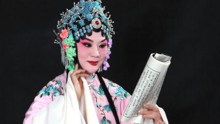 豫剧《秦雪梅》上集 梨园春擂主齐红霞主演