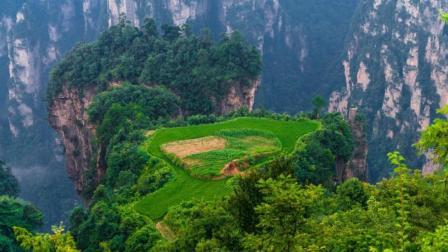 海拔2000米的空中田园, 一转身就是万丈深渊, 被称为最危险的稻田!