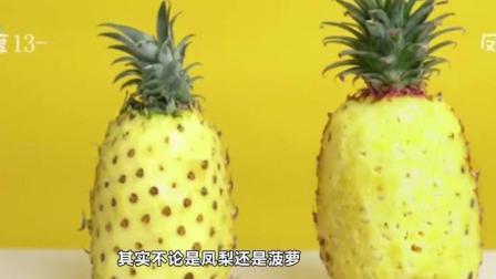 凤梨和菠萝傻傻分不清楚, 它们的区别我们一直都搞错了