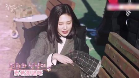 韩剧《伟大的诱惑者》拍摄花絮: 林秀荣JOY在街边逗猫, 气质真好