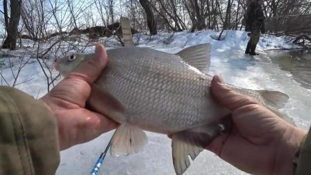 钓鱼: 大河边, 一把鱼竿就行, 鱼大还好钓!
