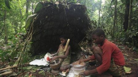 #SNL#平均寿命只有30岁的非洲森林部落, 女孩8岁结婚20岁当奶奶?