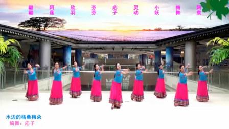 应子广场舞 水边的格桑梅朵(维族藏族多元素舞蹈)