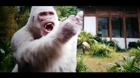 巨石强森也会被聪明的大猩猩竖中指嘲, 电影里最令人搞笑的一段!