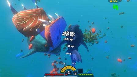 海底大猎杀 这个大白鲨是个傻子自己鱼都咬