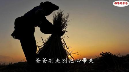 老父亲去世, 远嫁女儿来晚, 跪在灵前唱了一首歌, 全村人嚎啕痛哭
