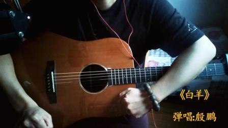 徐秉龙/沈以诚《白羊》-吉他弹唱-殷鹏
