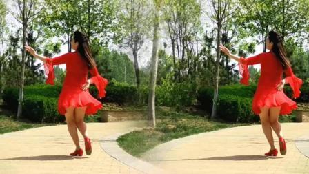 欣子广场舞《春天蝴蝶飞》