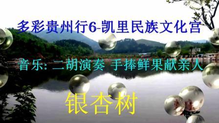 多彩贵州行6-凯里民族文化宫-音乐  手捧鲜果献亲人