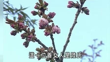 善女人往生传(019集-020集)--信愿法师