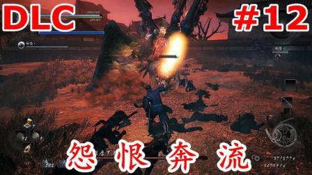 洛西2333【仁王】DLC 怨恨奔流 #12 通关攻略解说视频