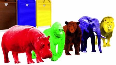 启蒙教育幼儿学颜色: 卡车为动物园运来许多动物, 有, 大象、河马、猩猩和狮子