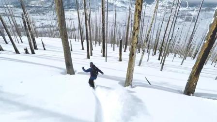 治愈系单板滑雪穿越林间 感人美景令人神往