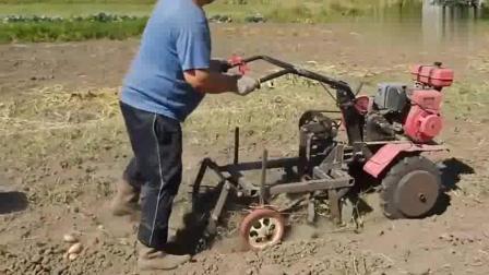 俄罗斯农民大叔自制的刨土豆小农机, 效率那是棒棒的