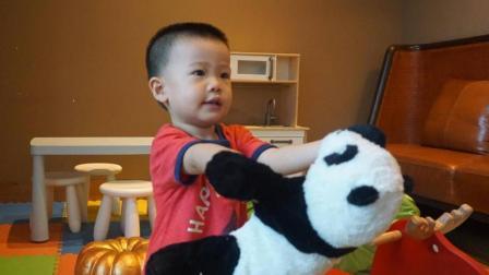 叮当香港看海成都看小熊猫(照片)