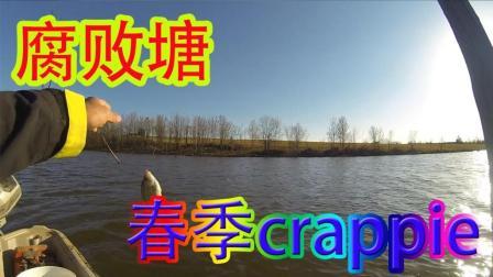 春季腐败塘莓鲈大作战