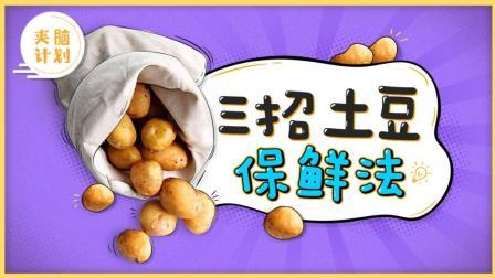 教你3招土豆保鲜法, 比冰箱保鲜还好用