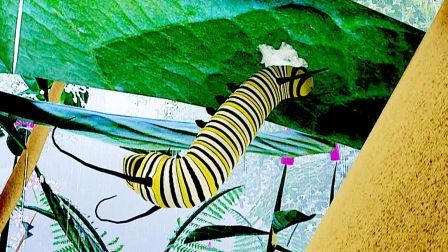 每天玩游戏 第一季 虫虫模拟器 作为一只可爱的毛毛虫要怎么变成大蝴蝶呢?