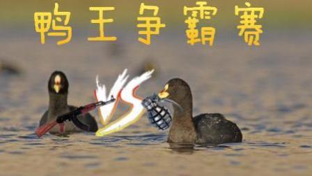 (鲨鱼娱乐)鸭王争霸赛#3|新地图游玩, 玩家自制地图