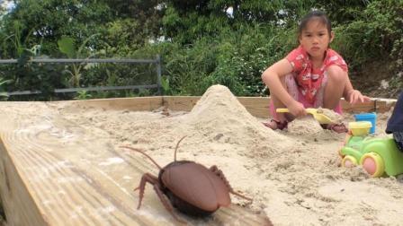我的蟑螂日记 .feat Sunny Yummy露营 妹妹在上画画课 姐姐在玩沙 突袭正在睡觉的爸爸
