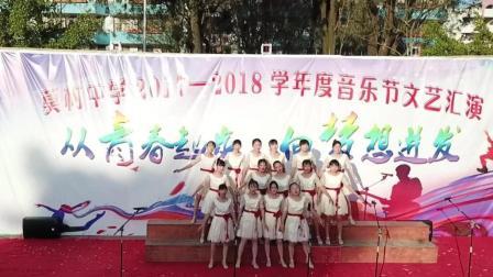 莫村网--莫村中学2017音乐节文艺汇演航拍(高清