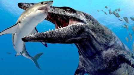 3亿年前的地球, 为什么动物都长得特别巨大?