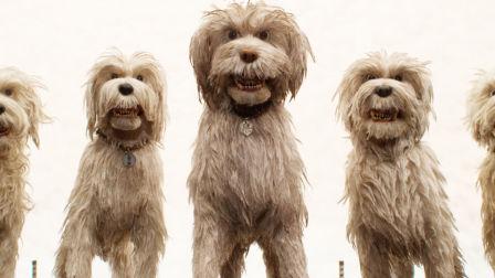 《犬之岛》获观众高度肯定 韦斯·安德森式美学受力捧