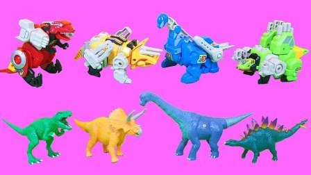 恐龙世界动画片 帮帮龙出动之恐龙探险队 恐龙大作战 霸王龙 三角龙