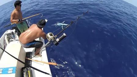 海钓金枪鱼, 还没拉上船就已经把鱼敲死了!