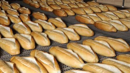 德国全自动面包生产线实拍, 面粉倒进去, 美味的面包就出来了!