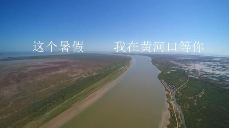 震撼视频: 这个夏天 我和孩子一起去黄河口寻根