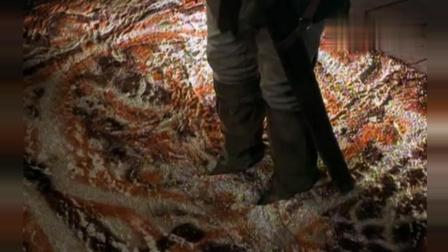 能把人吸进去的地毯, 你们见过吗?