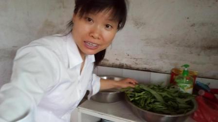 中国美食视频 生活印迹之炒空心菜的家常做法视频 时令蔬菜空心菜 走过那片海做美食