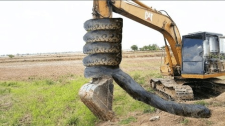 挖掘机师傅村外施工, 意外挖出大蛇, 小孩见后却乐坏了